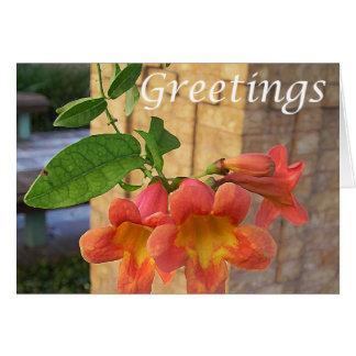 Funnel Flower Greeting Card