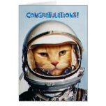 Funny 40th Birthday Congratulations Greeting Cards