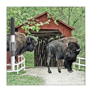 Funny American Bison At The Covered Bridge Dry Erase Board
