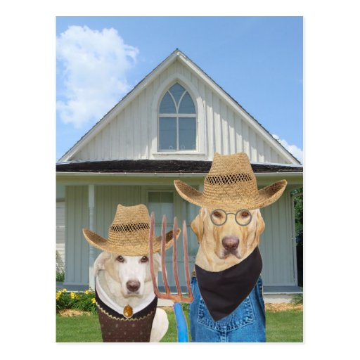 Funny American Gothic Dogs/Labs Post Card