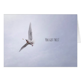 """Funny Animal Motivational """"You Got This"""" Seagull Card"""