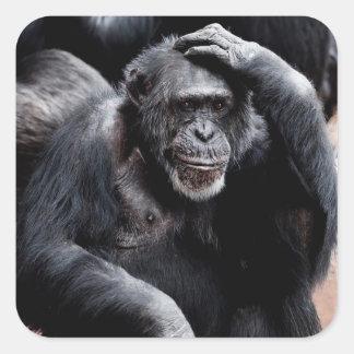 Funny Ape Sticker