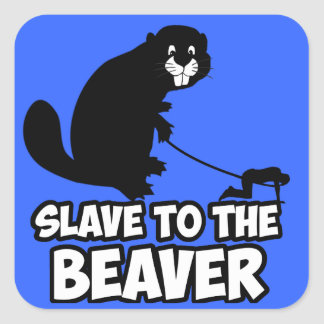 Funny Beaver Square Sticker