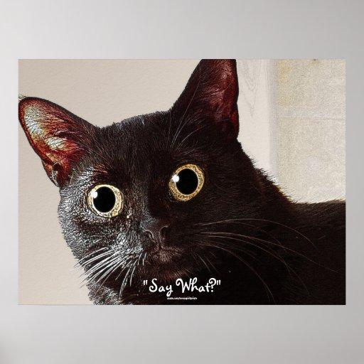 Funny Big-eyed Black Cat Pet-lover Poster