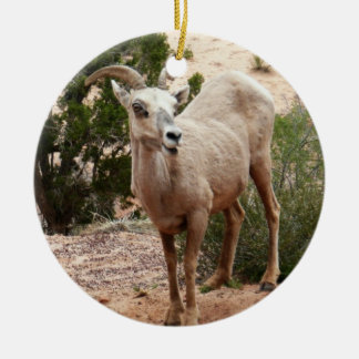 Funny Bighorn Sheep at Zion National Park Ceramic Ornament