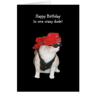 Funny Biker Cat Birthday from Conservatives Card
