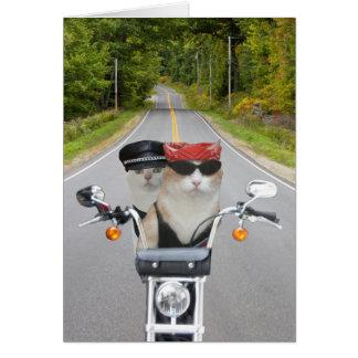 Funny Biker Cats Valentine/Anniversary Card
