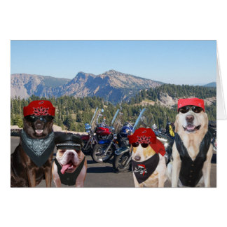 Funny Biker Dogs on a Mountain Birthday Card