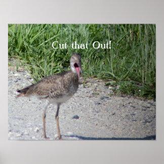 Funny Bird Photo Poster