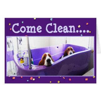 Funny Birthday Card w/Bassets in Purple Bathtub