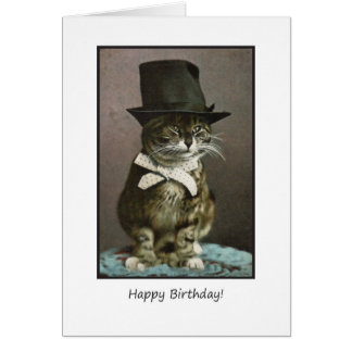 Funny Birthday Cat in Hat Cards