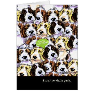 Funny Birthday from Group PBGV Dogs Card
