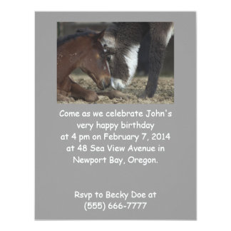 Funny Birthday Party Invite Horse customizable
