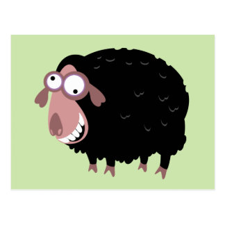 Funny Black Sheep Postcard