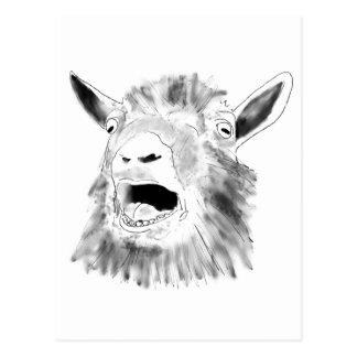 Funny bleating goat novelty art postcard