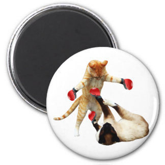 Funny boxing cats magnet