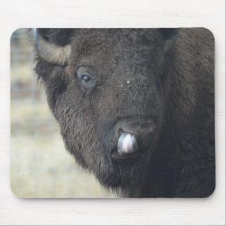 Funny Buffalo Mouse Pad
