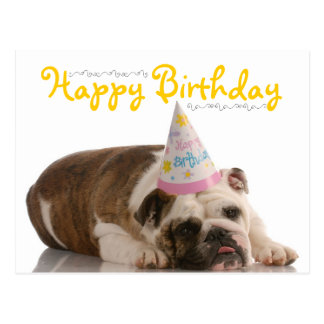Funny Bulldog Birthday Postcard
