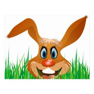 funny bunny postcard