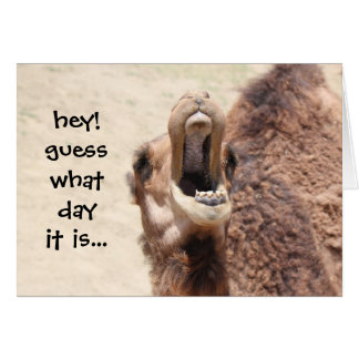 Funny Camel Hump Day Easter Card (blue)