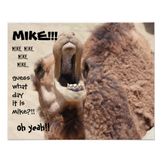"Funny Camel ""hump day""  Guess what day it is MIKE! Poster"