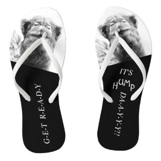 Funny Camel Hump Day Photo Flip Flops Thongs