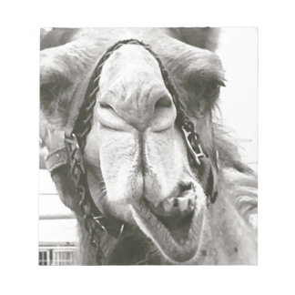 Funny Camel Notepad