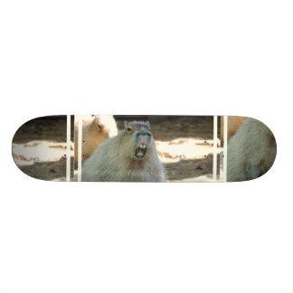 Funny Capybara  Skateboard