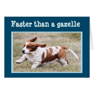 """Funny Card with """"The Birthday Basset"""""""
