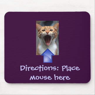 Funny Cat and Mousepad