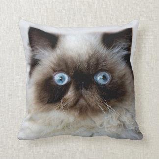 Funny Cat Cushion