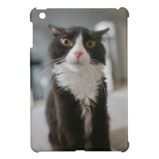 Funny Cat Face iPad Mini Case