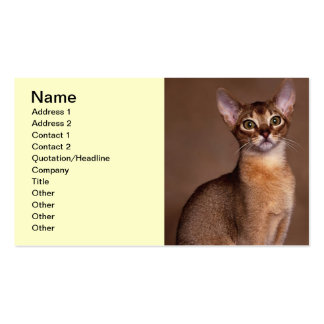 funny_cat_facial_expression_13 pack of standard business cards