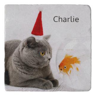 Funny Cat & Fish custom name trivets
