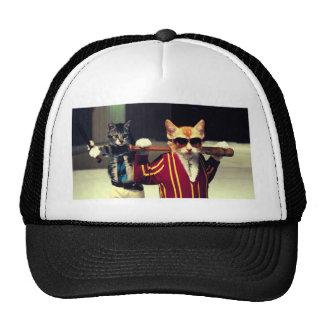Funny cat mesh hat