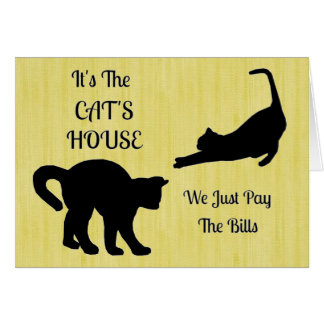 Funny Cat House Note Cards