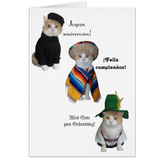 Funny Cat/Kitty Happy Birthday in Six Languages Greeting Card