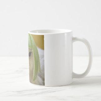 Funny Cat Merchandise Basic White Mug