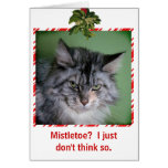 Funny Cat Mistletoe Christmas greeting card