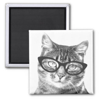 Funny cat photo magnets