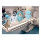 Funny Cat Scan Image Postcard