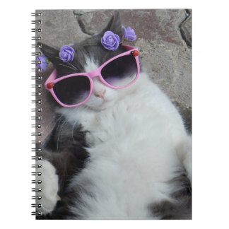 Funny cat with pink glasses spiral note book