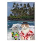 Funny Cats Hawaiian Valentine Card