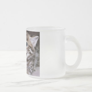 Funny Cats Coffee Mug