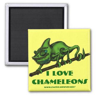 Funny chameleon magnet