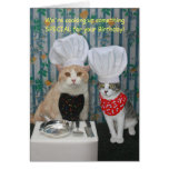 Funny Chef Cats Birthday