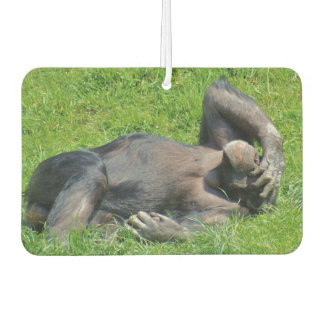 Funny Chimpanzee Car Air Freshener