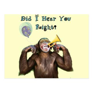 Funny Chimpanzee Humor Getting old Birthday card Post Card