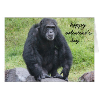 Funny Chimpanzee Valentine, wanna monkey around?! Card