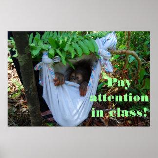 Funny Classroom Orangutan Print